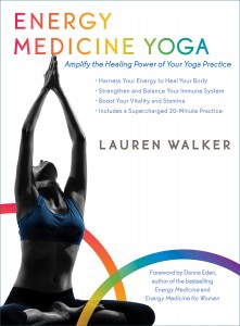 Lauren Walker Book Cover
